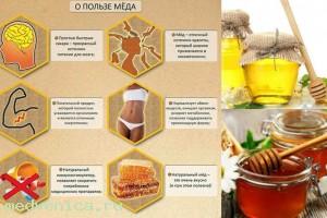 Воздействие пчелиного меда на мозг человека