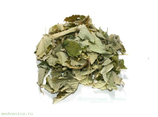 Земляника, лист (крафт пакет, 50 гр.)