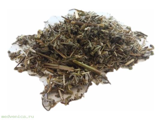 Шалфей, трава (крафт пакет, 50гр.)